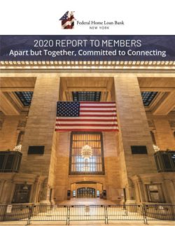 2020 Report to Member Cover
